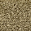 Marble Canyon Beige Colored Carpet Cove Base