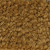 Greenfield Pumpkin Orange Carpet Wall Base