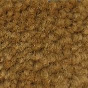 Greenfield Pumpkin Carpet Wall Base