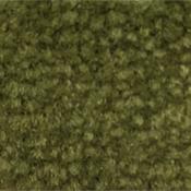 Hearty Hosta Carpet Wall Base