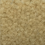 Oyster Carpet Wall Base
