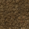 Fossil Butte Carpet Wall Base