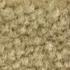 Marble Canyon Beige Carpet Cove Base